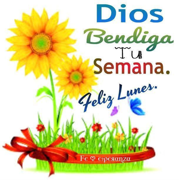 Dios bendiga tu semana. Feliz Lunes!