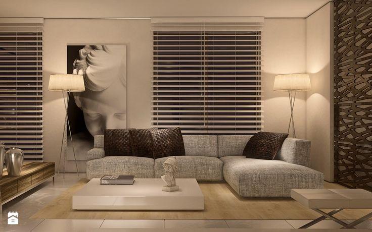 Limba Noir - zdjęcie od Ludwinowska Studio Architektury - Salon - Styl Minimalistyczny - Ludwinowska Studio Architektury