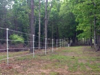 Electric Fencing Ideas That Will Work (And Will Fit Your Budget)