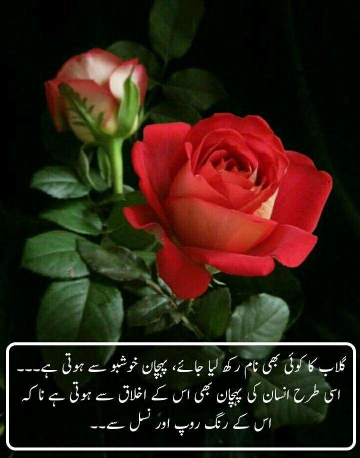 Niccccce Happy Love Quotes Happy Love Urdu Quotes