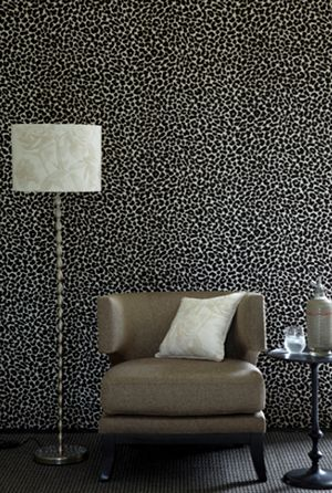 cheetah print wall!