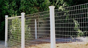 non climbing wire fence accented posts