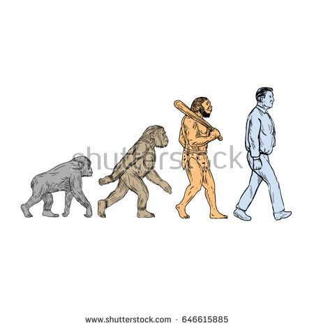 Drawing sketch style illustration showing human evolution from primate ape, homo habilis, homo erectus to modern day human homo sapien walking viewed from the side set on isolated white background.   #evolution #drawing #illustration