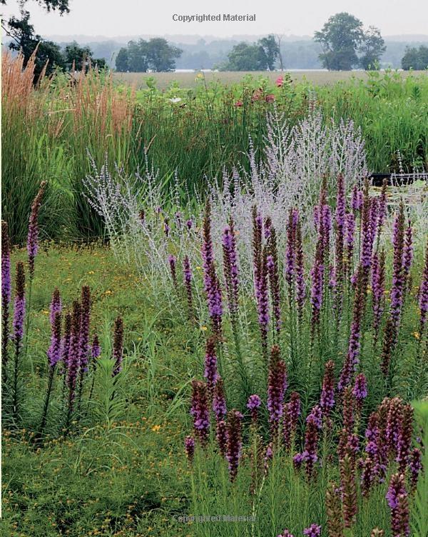 The Artful Garden: James van Sweden, Tom Christopher: Books