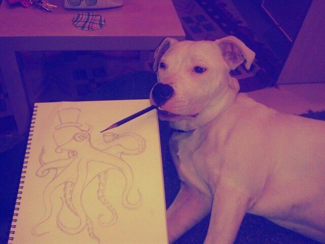 Love, kayra, dogo argentino , art