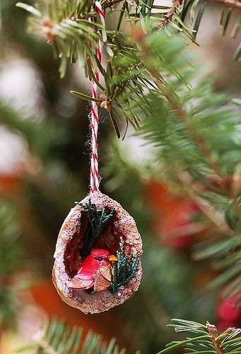 cardinal in a walnut shell | Blogged. | Liesl Gibson | Flickr More. Diy Christmas  OrnamentsChristmas ThingsChristmas DecorChristmas ...