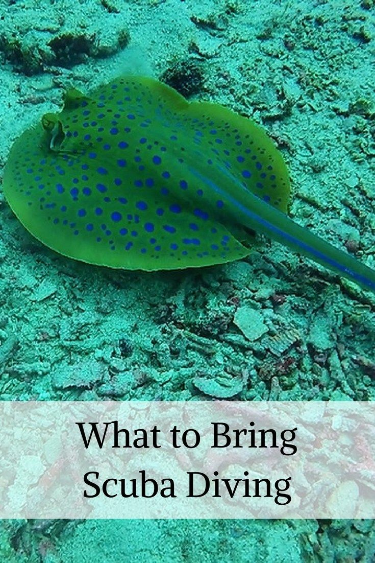 what to take on a dive boat, scuba diving items and accessories for dive trips scuba holidays and vacations, dry bags, gopro, red filter, diving advice and tips, asia diving thailand, malaysia, indonesia, philippines