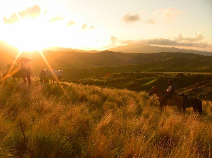 Horseback Riding in... #BucketList  http://travel.cnn.com/explorations/play/worlds-top-15-horse-treks-004706