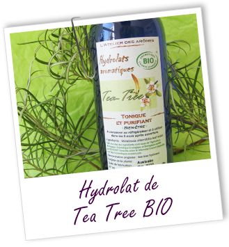 Fiche technique hydrolat de Tea tree BIO - Melaleuca alternifolia