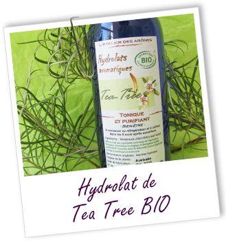 Fiche technique hydrolat de Tea tree BIO - Melaleuca alternifolia