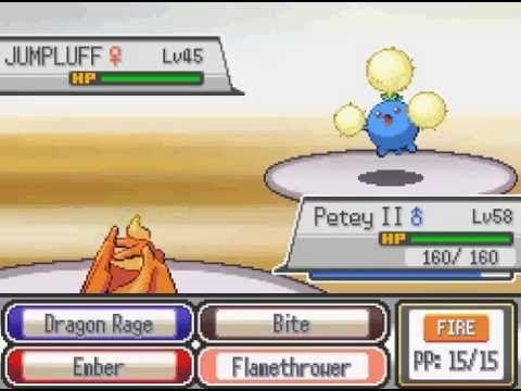 Pokemon Fusion Generation | Gym Leader Battles: Round 2 (Part 17)