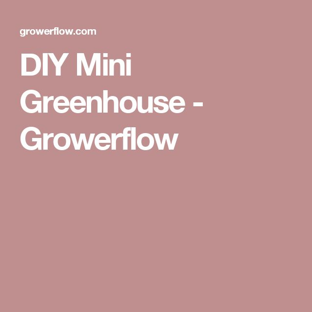 DIY Mini Greenhouse - Growerflow