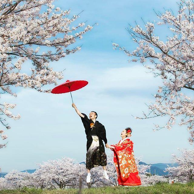 【1dayphoto_villaangelica】さんのInstagramをピンしています。 《. 春が待ちきれず2日連続桜photoをお届けします* . こちら人気の新郎飛んで行っちゃうポーズ。 お二人の演技力が素晴らしかったです!  #桜 #桜前撮り #春よこい #和装 #色打掛 #番傘 #ウェディングフォト#フォトウェディング#フォト婚#前撮り#滋賀花嫁#ウェディング#写真結婚式#結婚準備#wedding#ポートレート#卒花#2017春婚 #2017夏婚#日本中のプレ花嫁さんと繋がりたい#ヴィラアンジェリカ近江八幡》