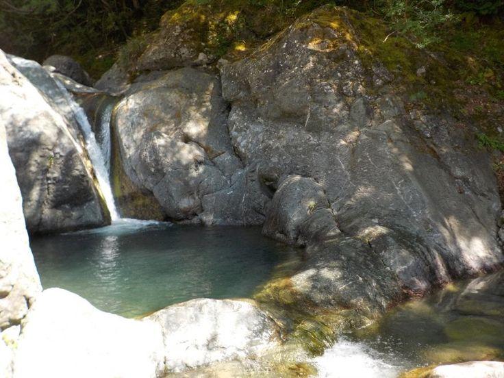Escursione balneare nell'area protetta dell'alta Valle del Cogena, un importante affluente del Taro. Acque limpide, cascate, enormi vasconi scavati