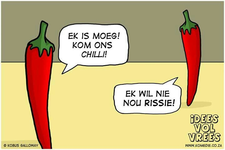 Idees vol vrees chilli, rissie