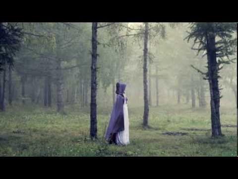 La huella blanca es una novela histórica ambientada en la Irlanda del siglo V, el primer libro de una trilogía.Narra la historia de…