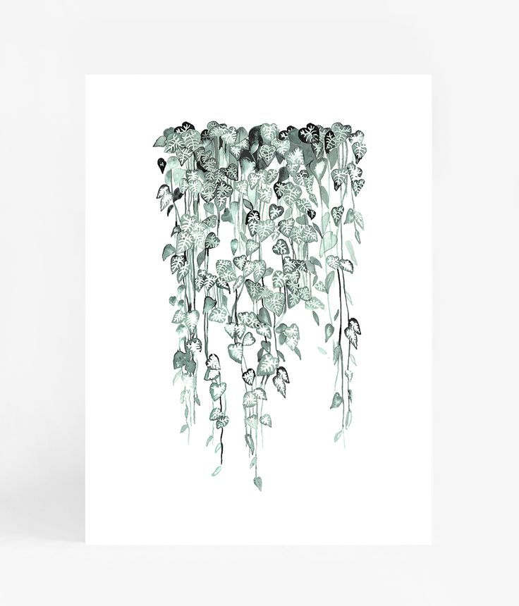 $49  watercolour print shop now at www.ledendesign.com