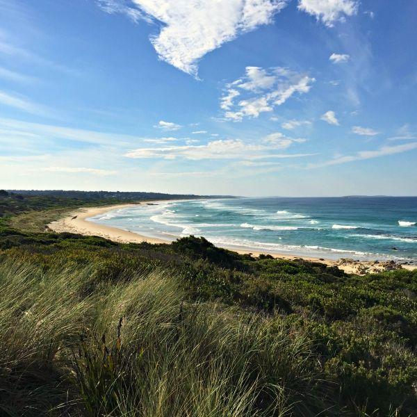 Beautiful Shelly Point via Scamander - East Coast #Tasmania #beach Article and photo for think-tasmania.com