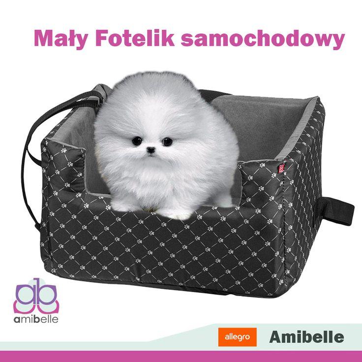 Fotelik samochodowy dla małych piesków i kotków  zapewni naszym słodkim pupilom  bezpieczną podróż! http://allegro.pl/maly-fotelik-samochodowy-transporter-dla-psa-kota-i6848663730.html#thumb/1