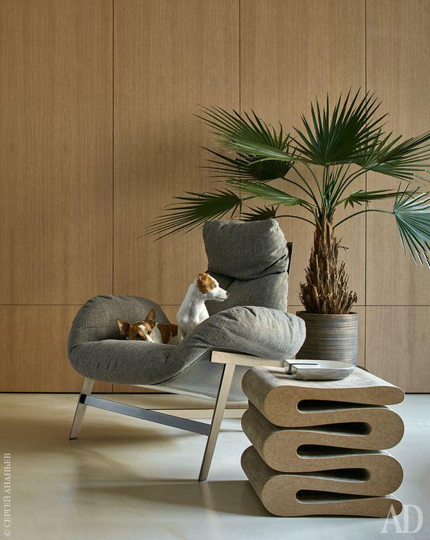"""Четвероногие """"хозяйки"""" квартиры Буся и Энджи. Кресло, Arketipo; столик,<br /> Vitra. Искусственное дерево """"Пальма Вашингтония"""", Treez Collection."""