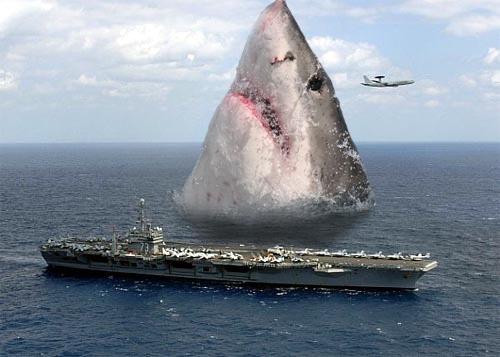 yyayayay the Giant Shark!   Just for Fun!   Pinterest ...
