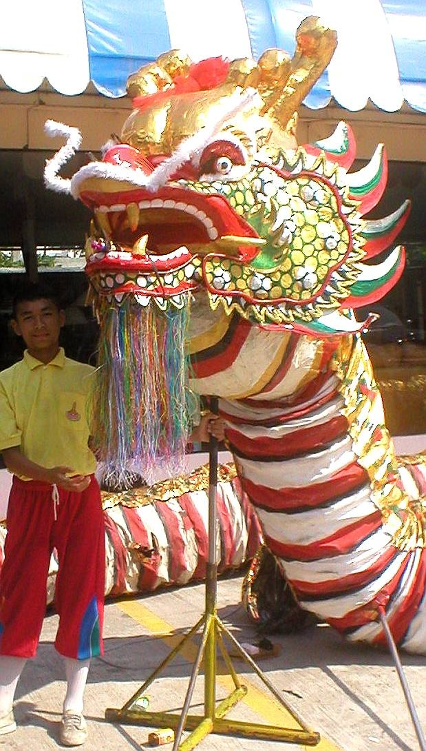 19 best images about nouvel an chinois on pinterest dragon hong kong and singapore - Photo dragon chinois ...