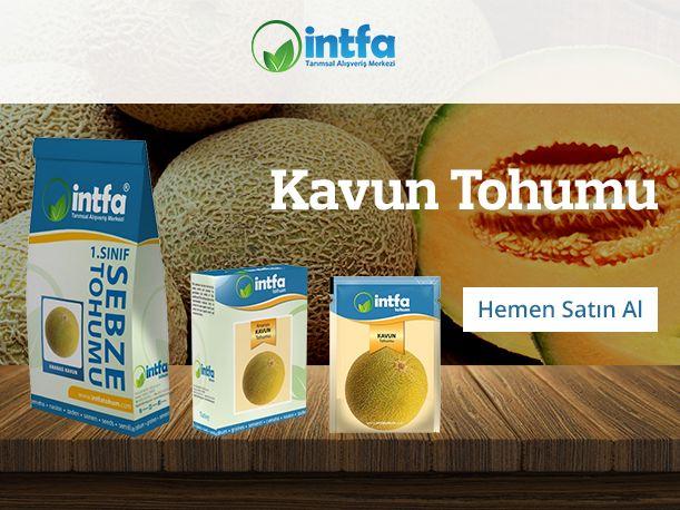Kavun Tohumu Siparişleriniz için   (0332) 342 59 92 - www.intfarming.com/sebze-tohumlari/kavun-tohumu