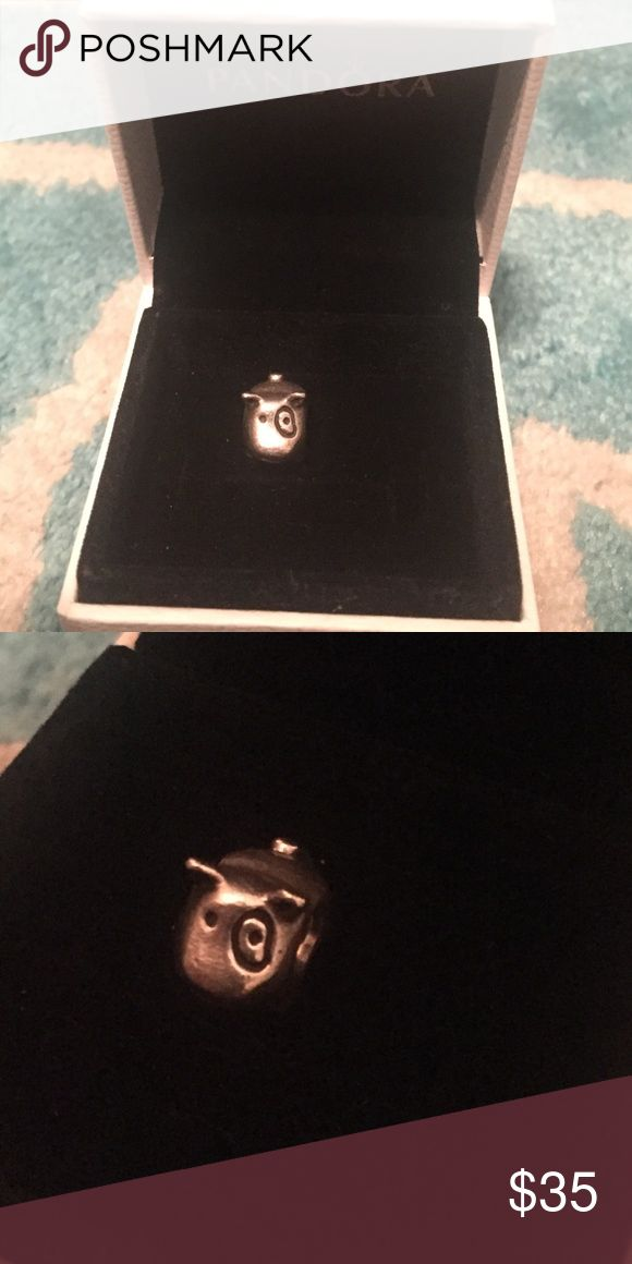 Authentic Pandora Dog Charm Authentic Sterling Silver . Pandora dog charm . Brand new condition. Comes in box Pandora Jewelry Bracelets