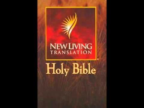 The Jesus Book Bible Translation. United Baseball become isolate Legends puede