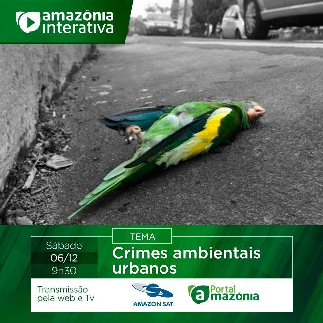 Amazônia Interativa do dia 06/12/2014.