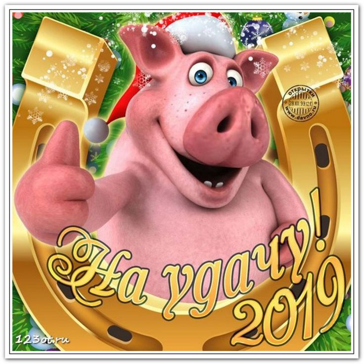 Картинки с пожеланиями к новому году 2019 свиньи прикольные