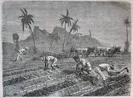 """""""Caridad [...] Allí, en las plantaciones, mientras trabajábamos, nos obligaban a cantar para que no tuviésemos tiempo de pensar."""" De Ildefonso Falcones, """"La reina descalza"""""""