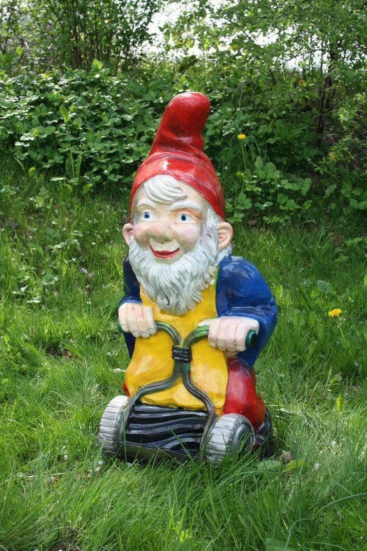 Gnome In Garden: 1000+ Images About It's A Gnome Life On Pinterest