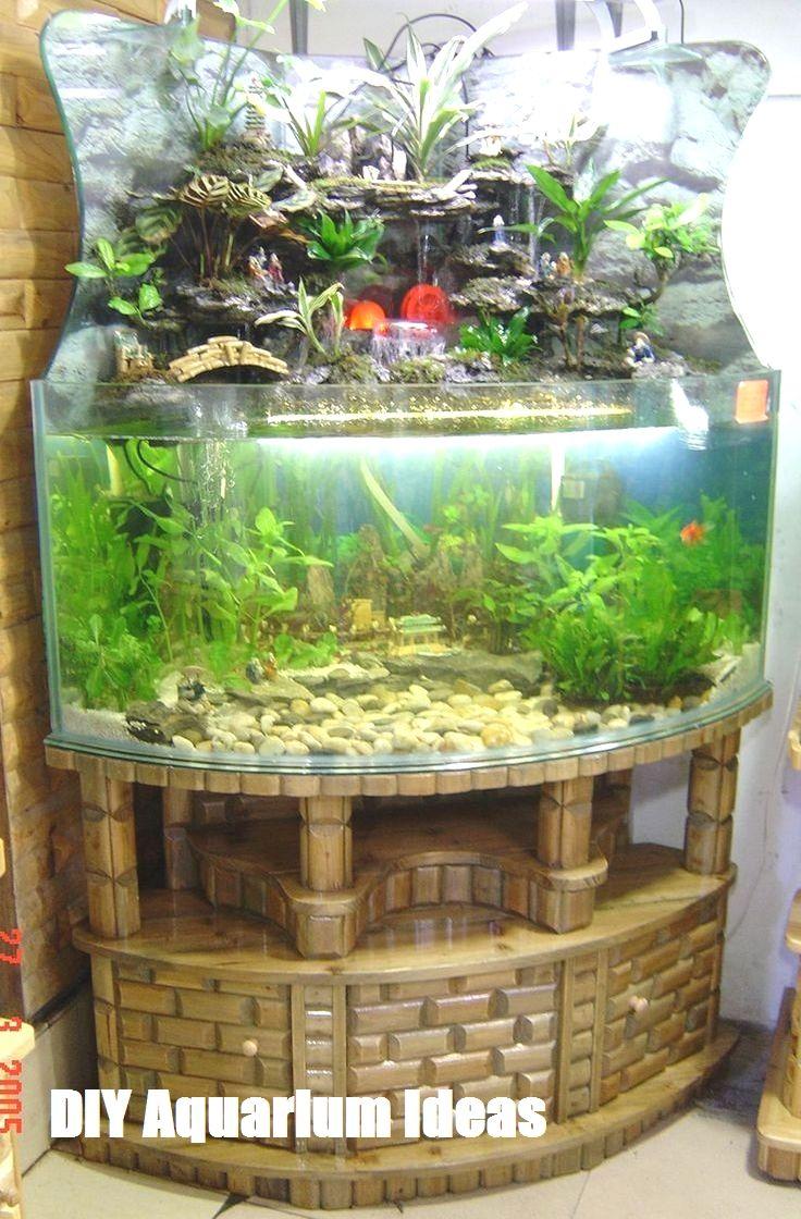 Betta Tank Set Ups Freshwater Aquarium Tank Setup Aquarium Betta Tank Tropical Fish Tanks