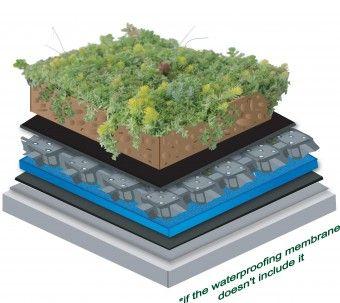 Tetto verde: tutti i vantaggi delle coperture green