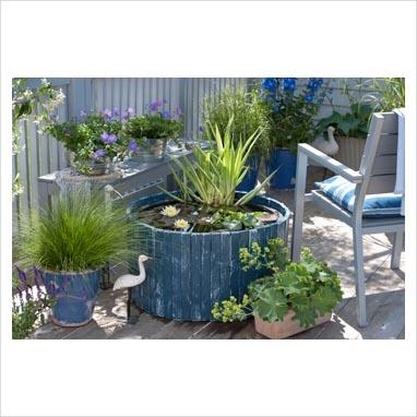 Mini pond on balcony - Nymphaea, Iris pseudacorus 'Variegata', Eichhornia crassipes, Alchemilla, Festuca rubra, Geranium 'Rozanne'