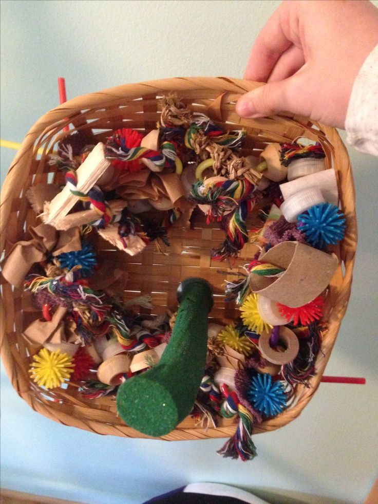 Wicker basket bird toy easy diy Sweetie decided to destroy his previous wicker basket toy, so I made him a new one. I used a nontreated all natural wicker basket. I strung a bunch of fun toy parts onto 4 silly straws and poked em through. Then I put his green perch through. Really easy, takes 30 mins. I got most of the stuff from dollar tree.