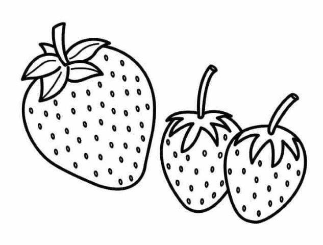 22 Dibujos De Frutas Para Colorear E Imprimir Alumno On Frutas