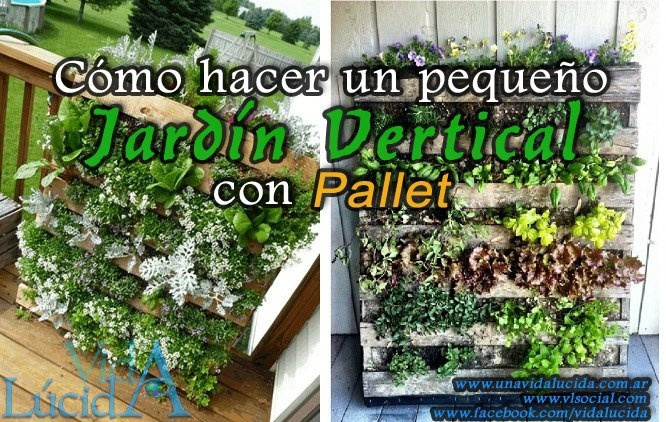 c mo hacer un peque o jard n vertical con pallet jardines verticales pinterest. Black Bedroom Furniture Sets. Home Design Ideas