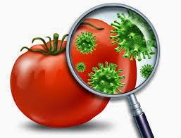 Pana sa ajunga pe masa noastra fructele si legumele sunt tratate cu diferite pesticide pt a arata bine sau pt a rezista la transport. Mai mult decat atat, culegatorii, masinile de transport sau chiar rafturile magazinelor pot reprezenta sursa unor bacterii precum listeria, samonella si E.coli, care sunt periculoase pentru organism.