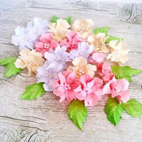 Gardenia ślubna