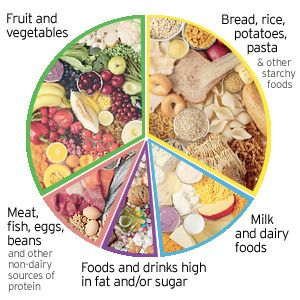how to use the eatwell plate