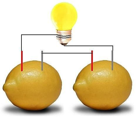 How to Make a Lemon Powered Light Bulb w/   Two lemons Stiff copper wire Large steel paper clips