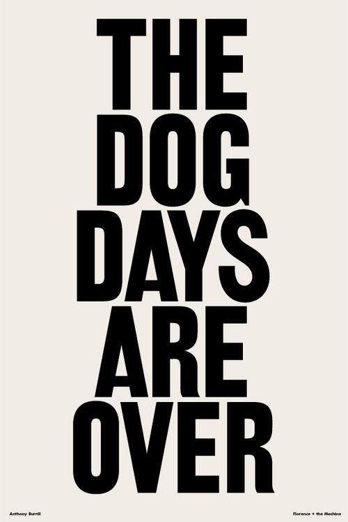 The Dog Days Are Over Florence And The Machine Citacoes