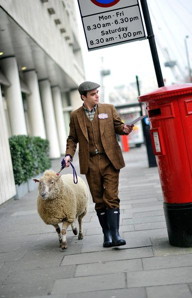 Oh just taking my sheep w/ me to post a letter...