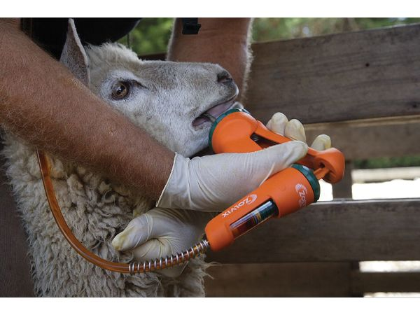 OPTILINE Sheep Drench - Vote Now - Melbourne Design Awards
