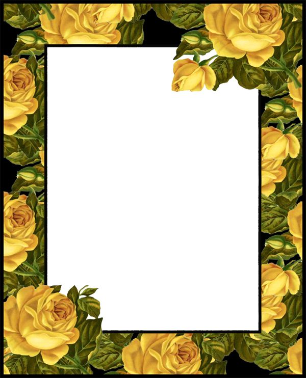 Transparent PNG Photo Frame With Yellow Roses