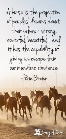 Horse Quote!!!--I would buy this poster and put it on my so fast...:)