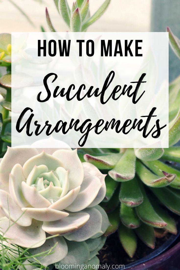 How To Make Succulent Arrangements In 2020 Succulent