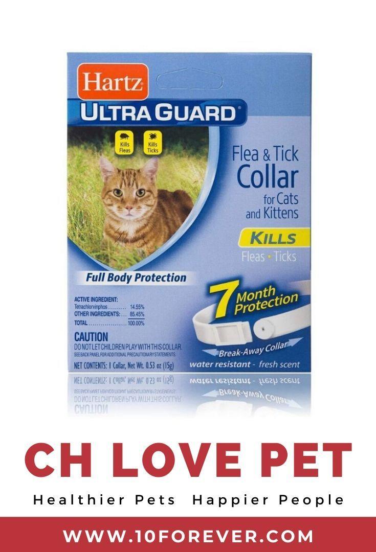 Hartz Ultraguard Flea And Tick Cat And Kitten Collar 4 67 In 2020 Flea And Tick Cat Fleas Kitten Collars